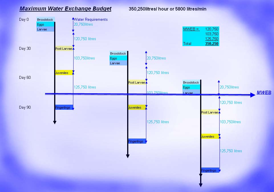 max water budget